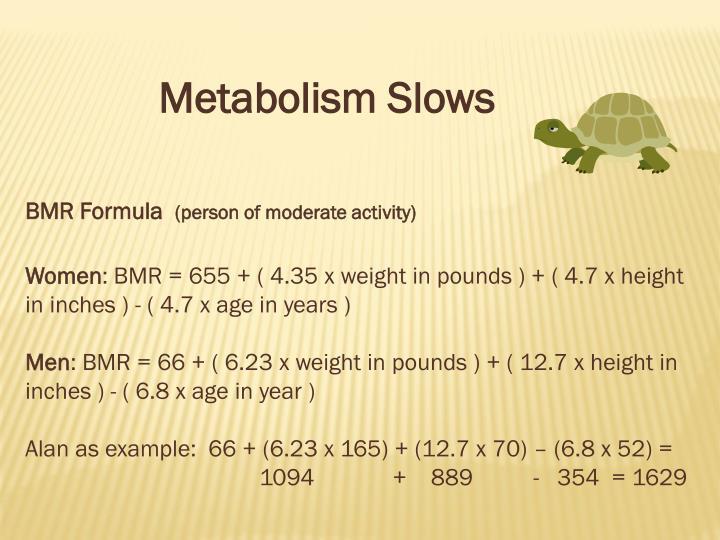 Metabolism Slows