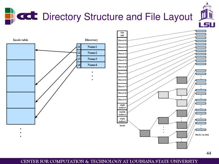 Directory Structure and File Layout