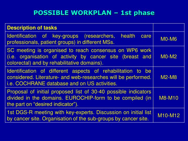 POSSIBLE WORKPLAN – 1st phase