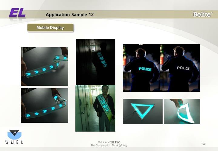 Application Sample 12