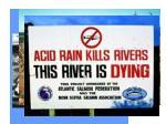 effects of acid rain