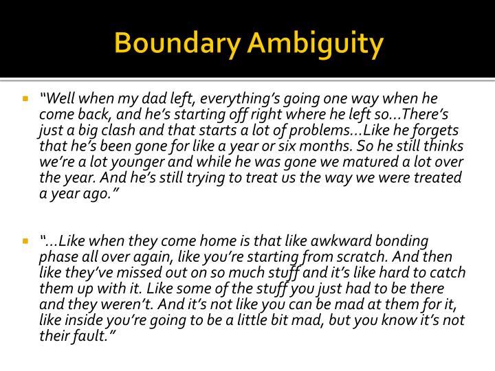 Boundary Ambiguity