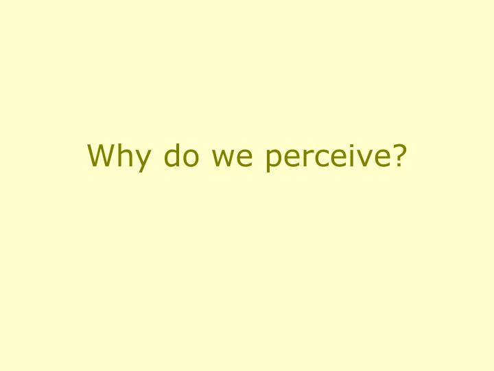 Why do we perceive