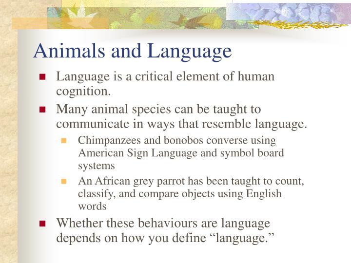 Animals and Language