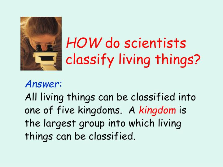 How do scientists classify living things