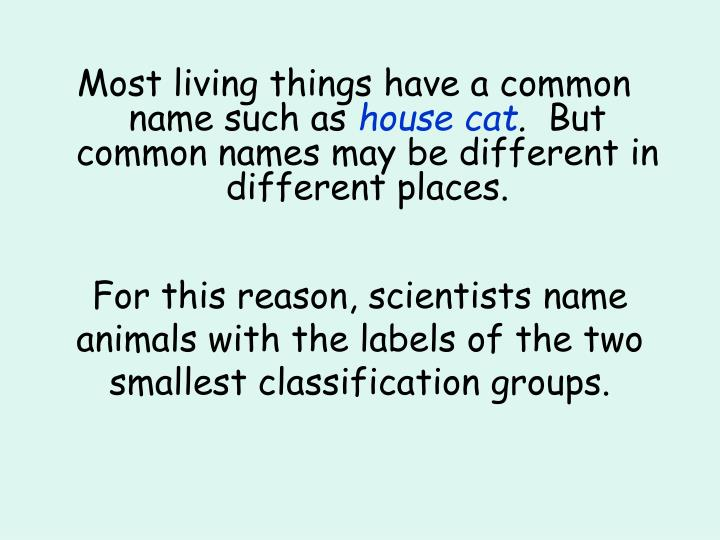 Most living things have a common name such as