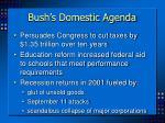bush s domestic agenda