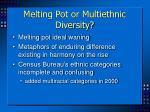 melting pot or multiethnic diversity