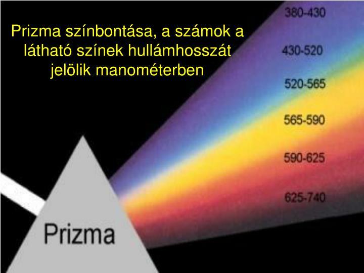 Prizma színbontása, a számok a látható színek hullámhosszát jelölik manométerben