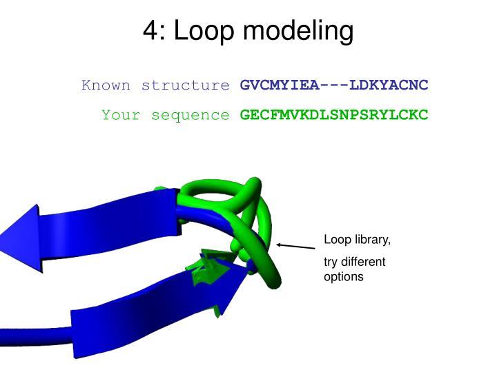 4: Loop modeling