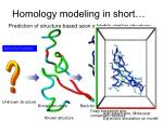 homology modeling in short