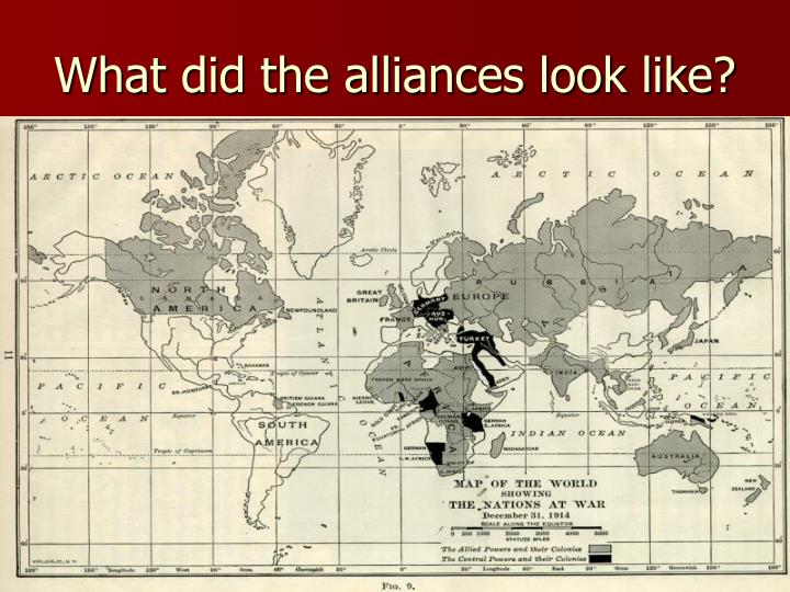 What did the alliances look like?