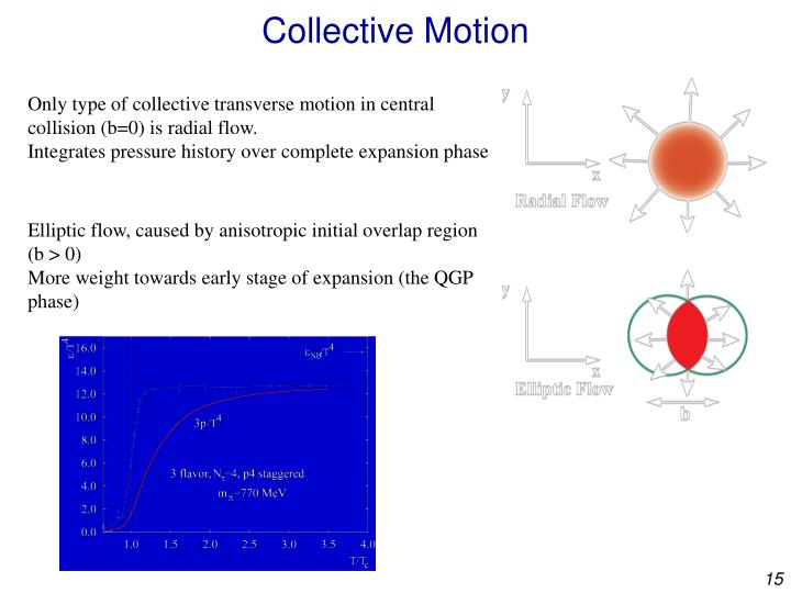 Collective Motion