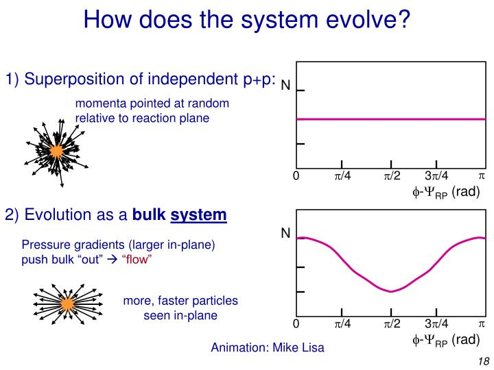 How does the system evolve?