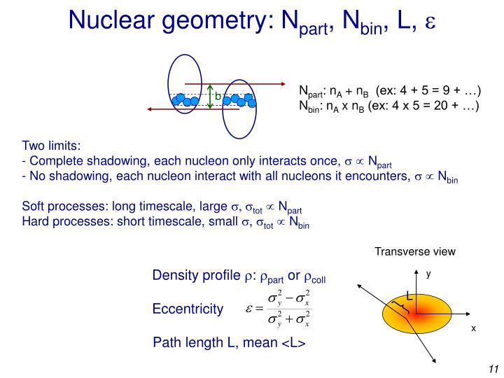 Nuclear geometry: N
