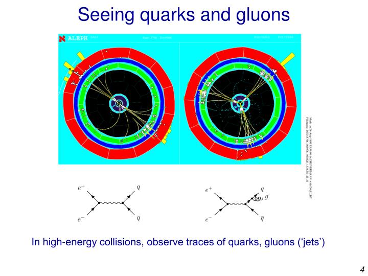 Seeing quarks and gluons