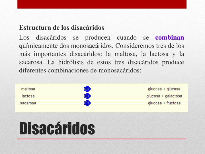 Estructura de los disacáridos