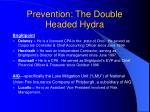 prevention the double headed hydra