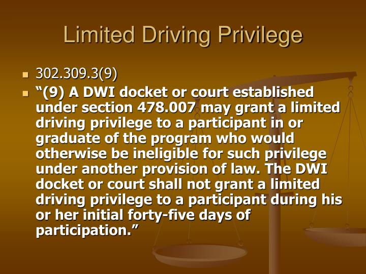 Limited Driving Privilege