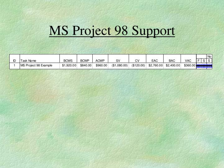 MS Project 98 Support