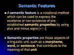 semantic features1