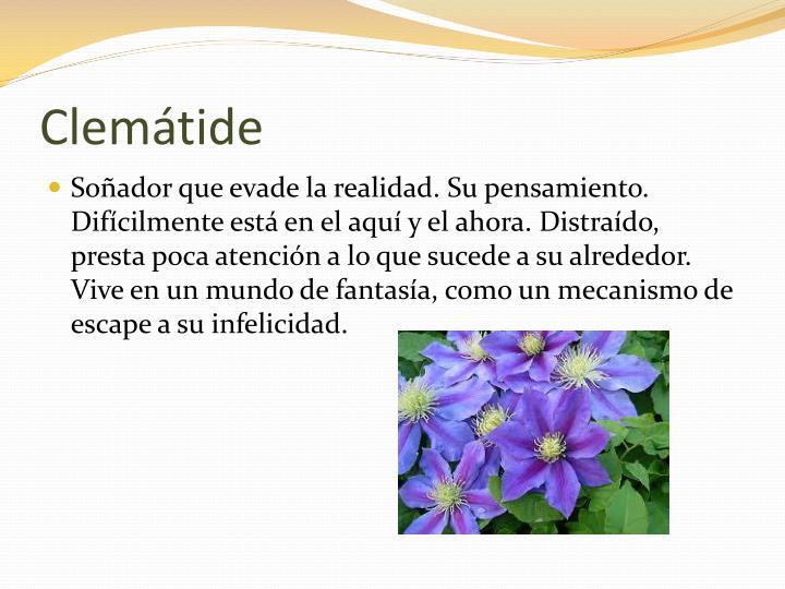 Clemátide