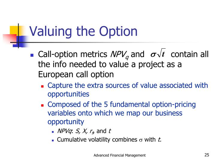 Valuing the Option