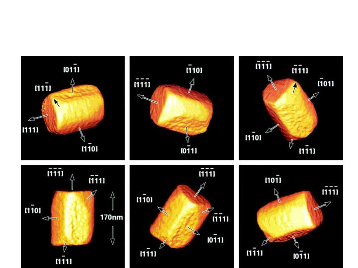 3D Imaging of Bacterial Magnetosomes