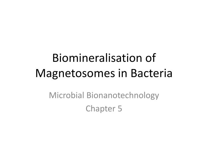 Biomineralisation of Magnetosomes in Bacteria