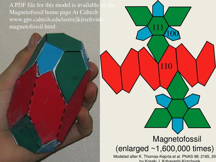 A PDF file for this model is available on the
