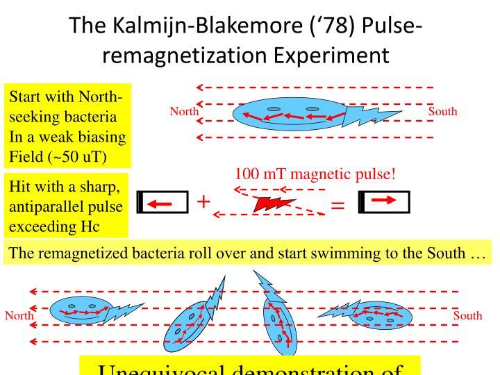 100 mT magnetic pulse!