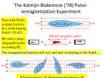 the kalmijn blakemore 78 pulse remagnetization experiment