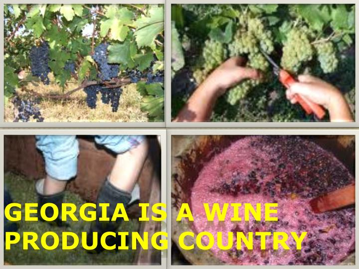 Georgia is a wine producing country