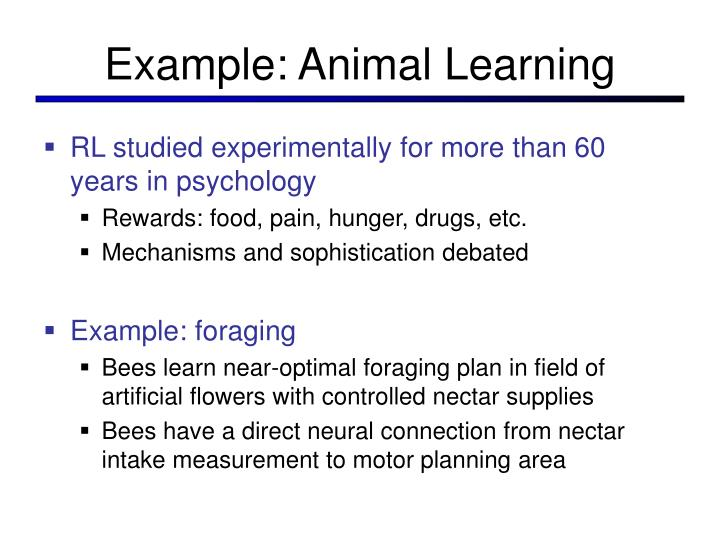 Example animal learning