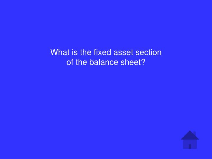 What is the fixed asset section of the balance sheet?