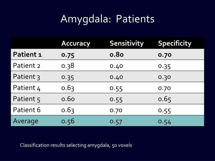 Amygdala: