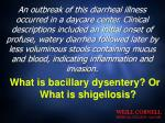 what is bacillary dysentery or what is shigellosis