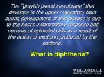 what is diphtheria