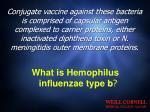 what is hemophilus influenzae type b