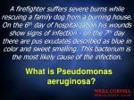 what is pseudomonas aeruginosa
