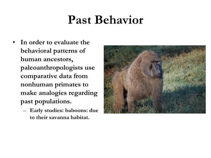 Past Behavior
