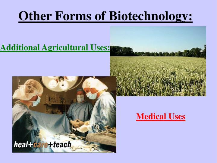 Other Forms of Biotechnology: