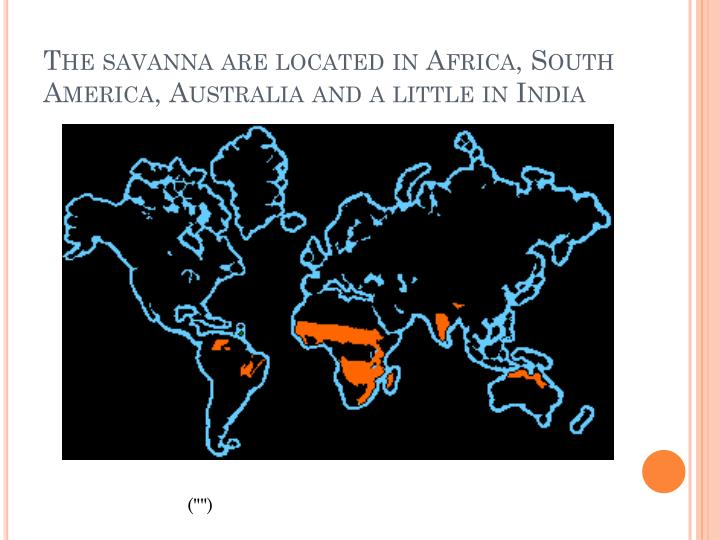 The savanna are located in Africa, South America, Australia and a little in India
