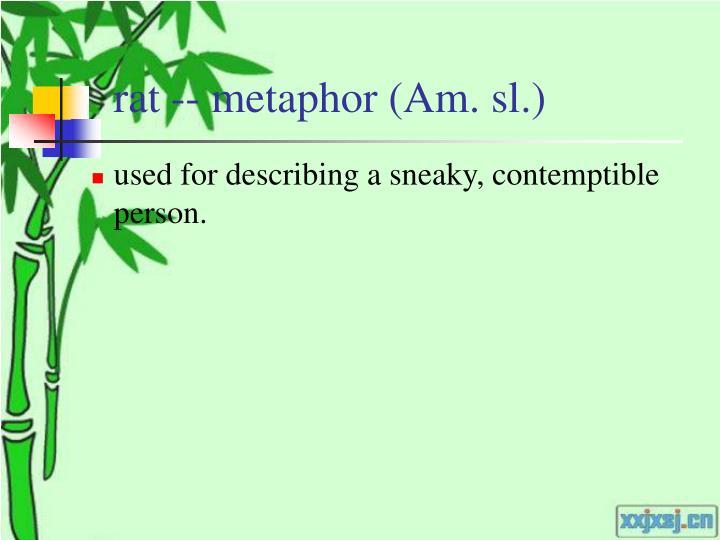 rat -- metaphor (Am. sl.)