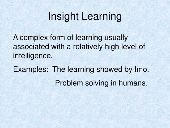 Insight Learning