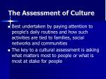 the assessment of culture