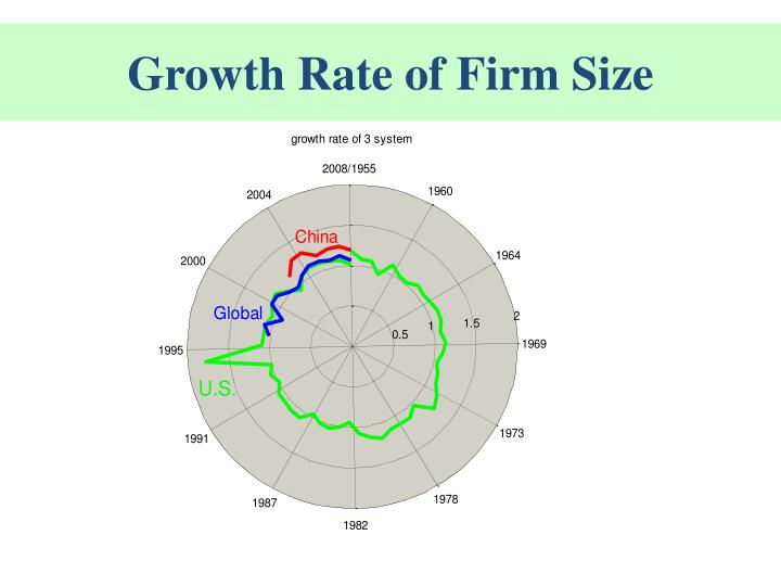 Growth Rate of Firm Size