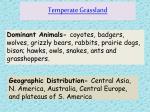 temperate grassland1