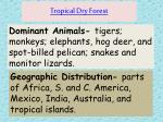 tropical dry forest2