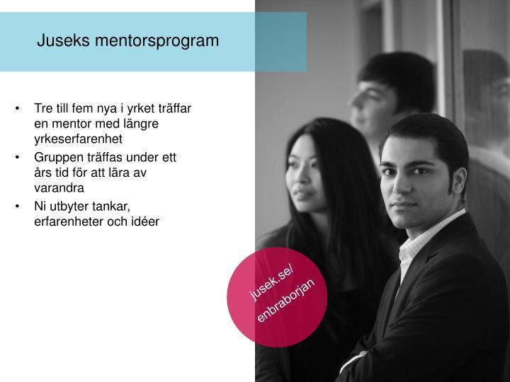 Tre till fem nya i yrket träffar en mentor med längre yrkeserfarenhet